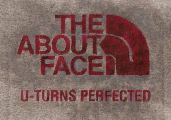 aboutface_scan